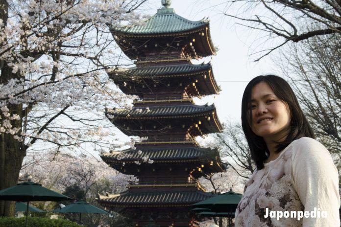 hanami en Japón