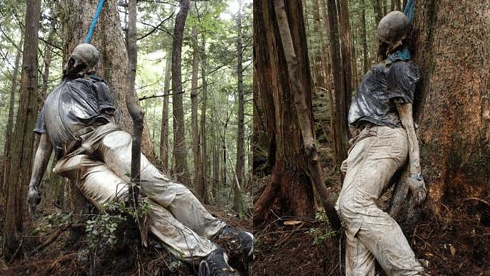 Aokigahara. El bosque de los suicidas de Japón.