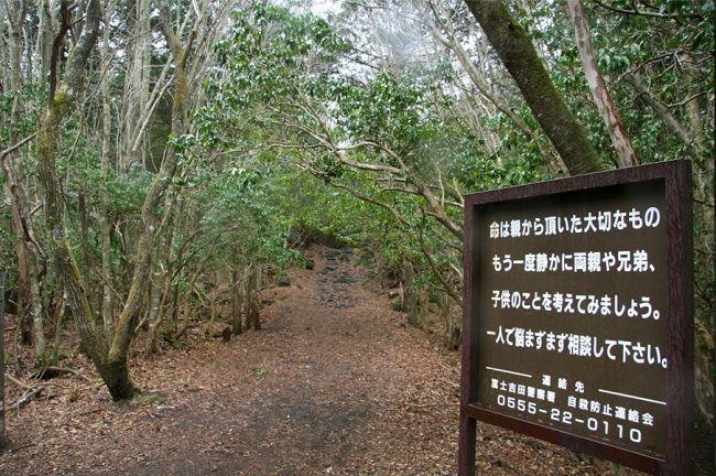 Aokigahara. El bosque de los suicidas. Japón. Carteles.