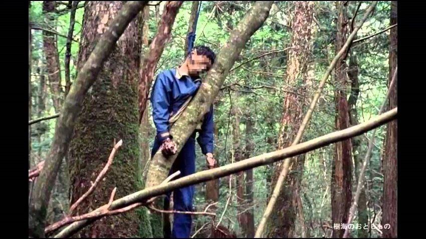 Bosque de los suicidas de Japón