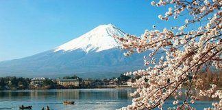Contratar excursión a Hakone y el monte Fuji