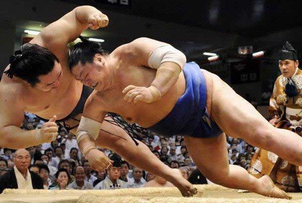 Comprar entradas para un torneo de sumo. Luchadores.