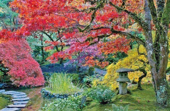 Día de la naturaleza en Japón