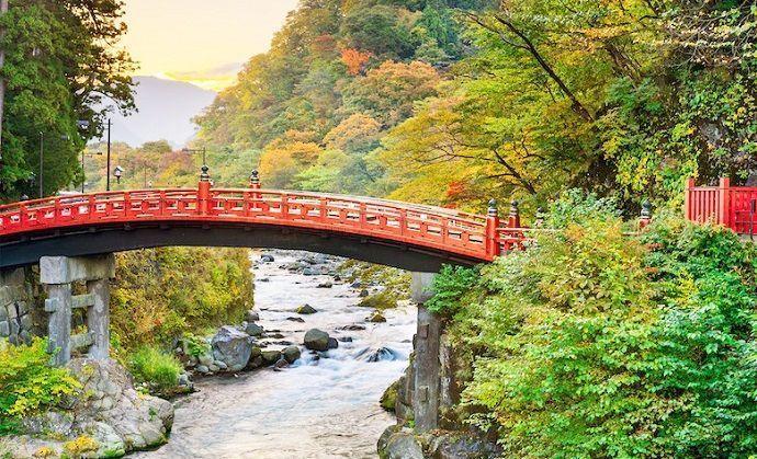 Guía privado en Nikko desde Tokio
