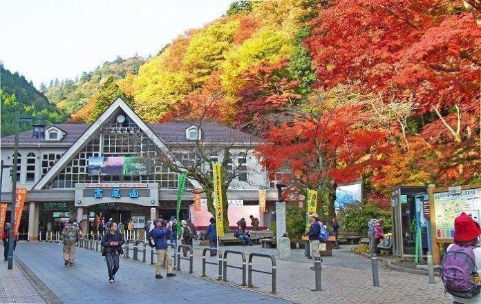 Visita guiada al Monte Takao. Visita guiada.