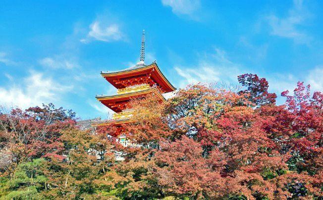 Guía de Kioto