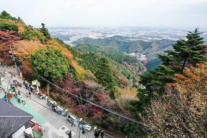 Visitas guiadas al monte Takao.