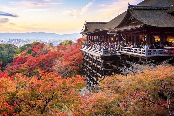 Visitas guiadas por Japón.