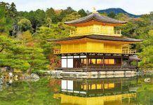 Visita guiada a Kioto