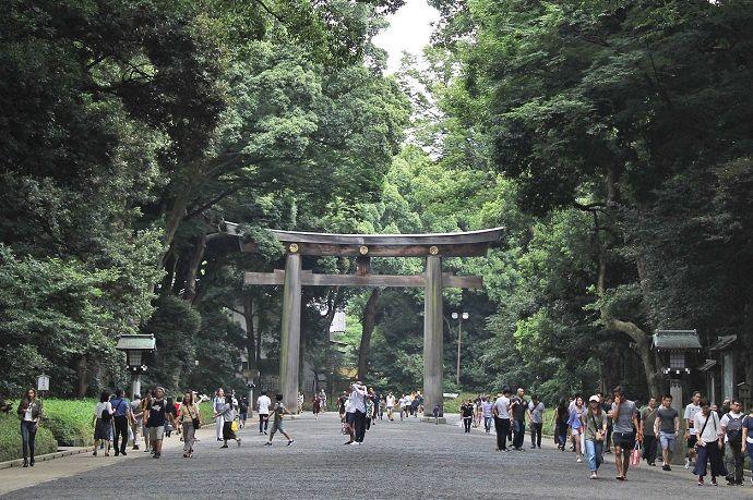 Yoyogi Koen. Tour privado por Tokio.
