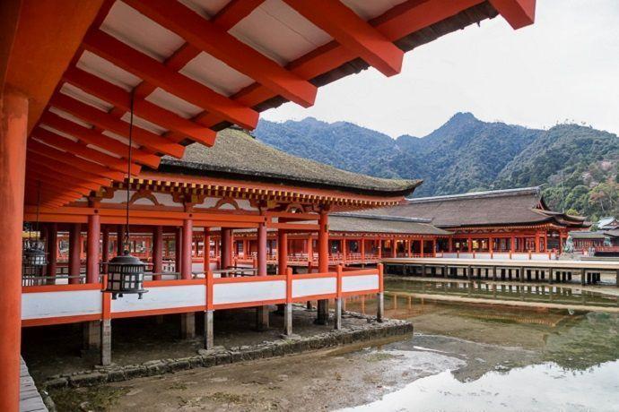 Tour privado. Santuario de Itsukushima. Miyajima