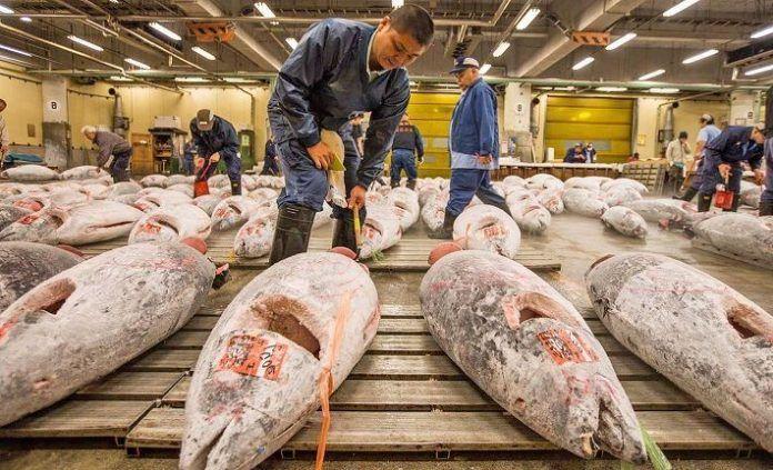 Visita guiada por el Mercado de Tsukiji