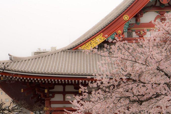 Lista de los mejores barrios de Tokio. Asakusa.