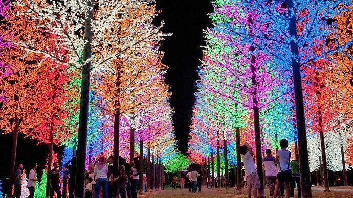 Viajar a Japón en Navidad