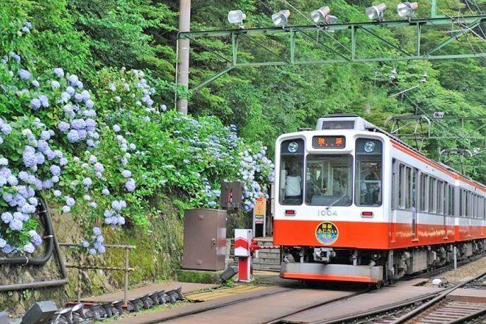 viajar por Hakone. Hakone Free Pass