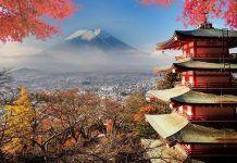 Excursiones desde Tokio.