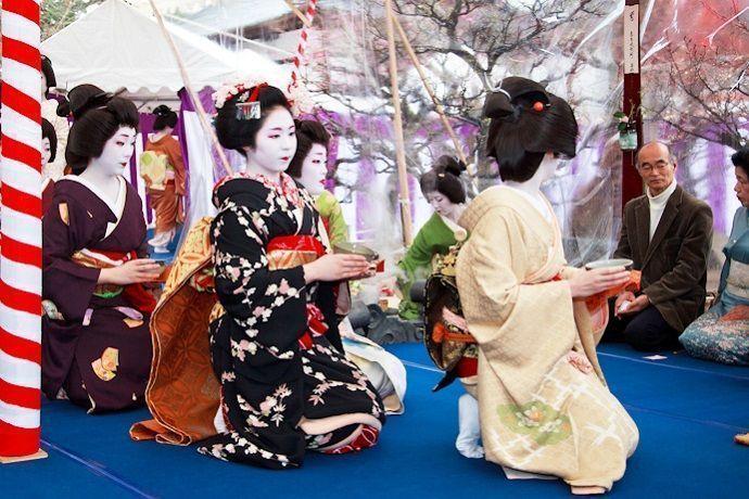 Baika-sai. Festival de los ciruelos de Kioto.