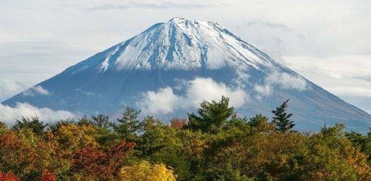 Excursión por Aokigahara