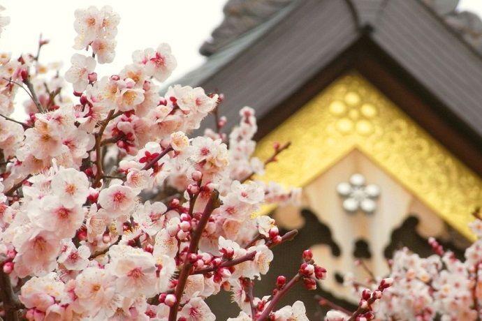 Japón en febrero. Yushima Tenjin