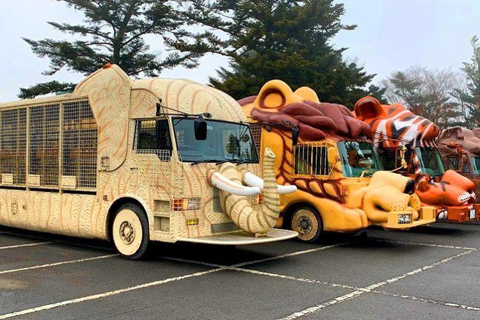 Autobús de Fuji Safari Park