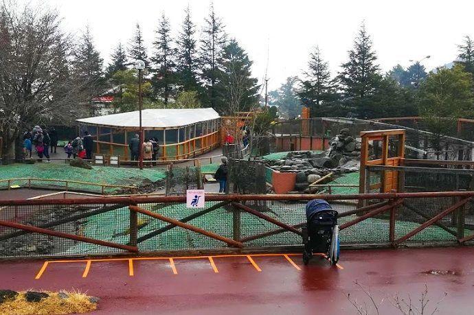 Visitar zona Fureai. Fuji Safari Park.