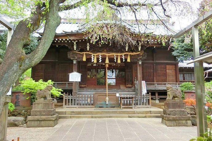 Hakusan Jinja. Tokyo Jissha