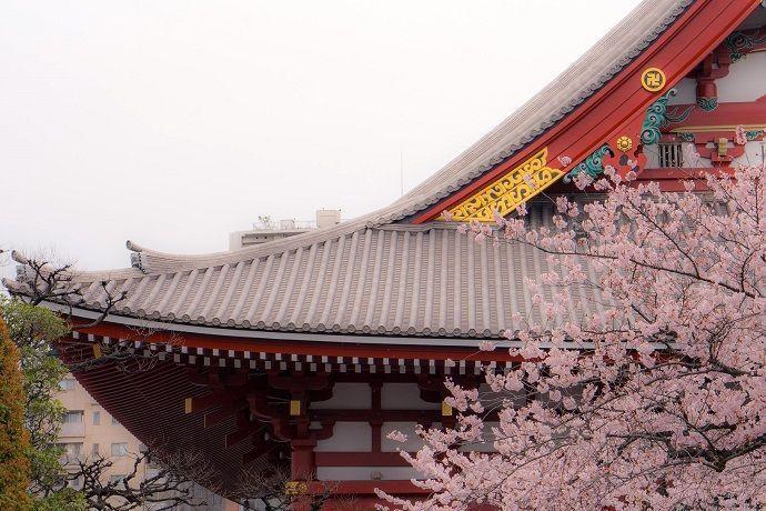 Guía turístico en Asakusa