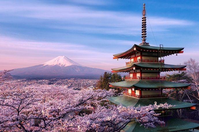 Visitas guiadas a Yamanashi. Monte Fuji.