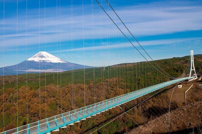 Excursión a la pasarela Mishima Sky Walk y monte Fuji.
