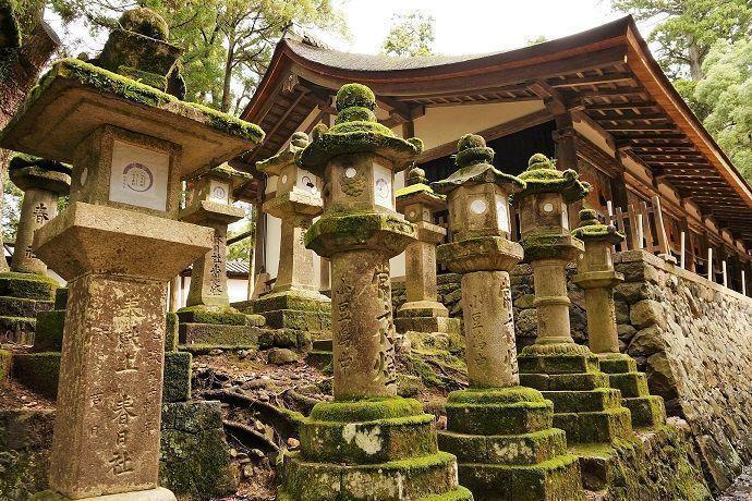 Reservar excursiones a Nara. Templo Kasuga taisha