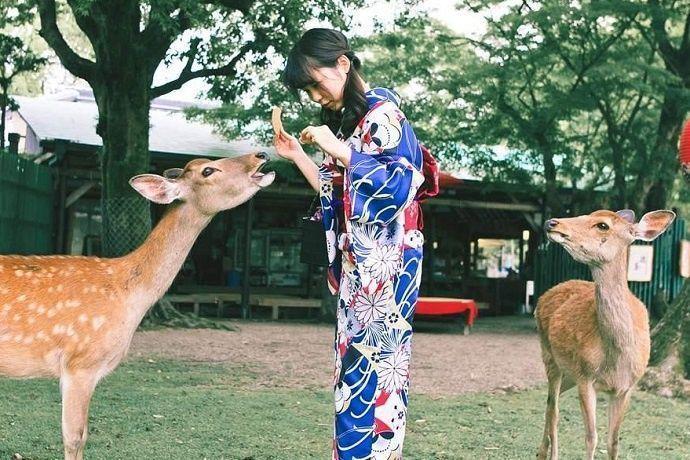 Paseo en Kimono