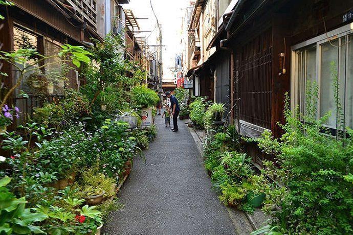 Qué ver Tsukishima