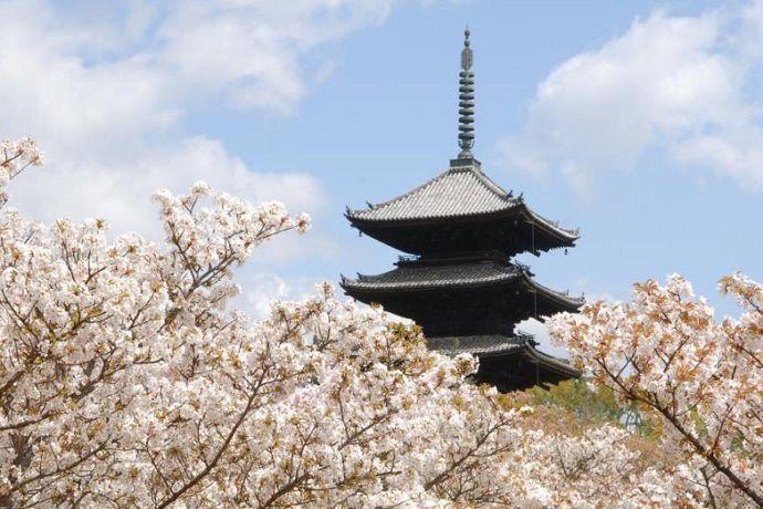 Ninnaji pagoda 5 plantas
