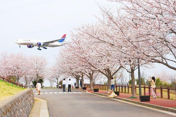 Qué ver en Narita