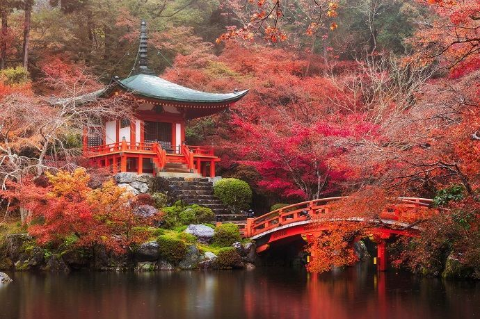 Viaje fotográfico Japón otoño
