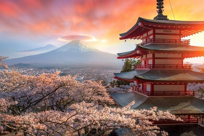 Viaje fotográfico Japón primavera