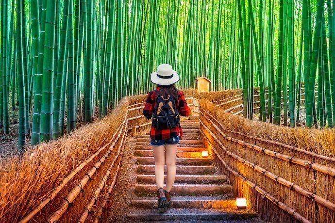 Excursión a Arashiyama desde Kioto