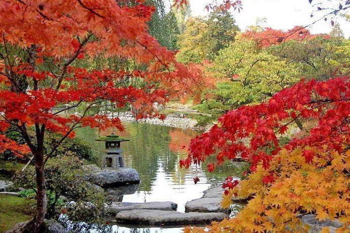 Tour por Kenrokuen en Kanazawa