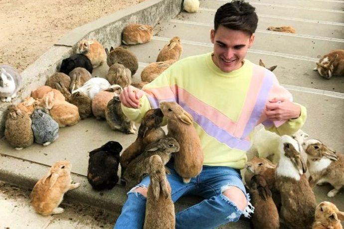 Japón isla conejo