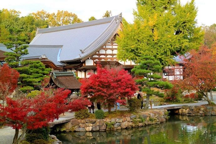 Excursión templo budista Eiho-ji.